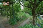 XREAL-Praha-5-Hlubocepy-Barrandov-Pod-tresnemi-.jpg13