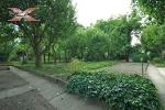XREAL-Praha-5-Hlubocepy-Barrandov-Pod-tresnemi-.jpg17