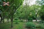 XREAL-Praha-5-Hlubocepy-Barrandov-Pod-tresnemi-.jpg18