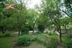 XREAL-Praha-5-Hlubocepy-Barrandov-Pod-tresnemi-.jpg20