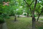 XREAL-Praha-5-Hlubocepy-Barrandov-Pod-tresnemi-.jpg26